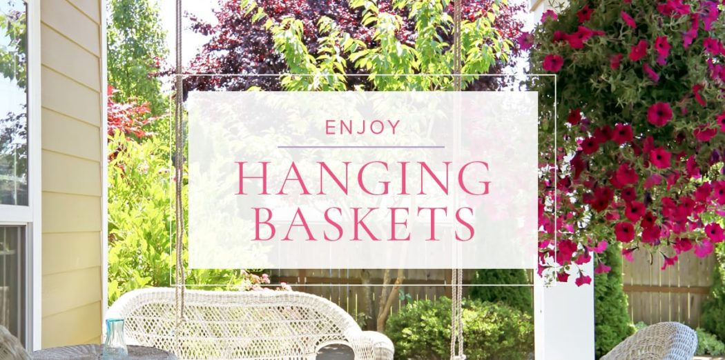 HangingBaskets-blog